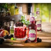 Fentimans - Sparkling Apple & Blackberry (12x275ml)